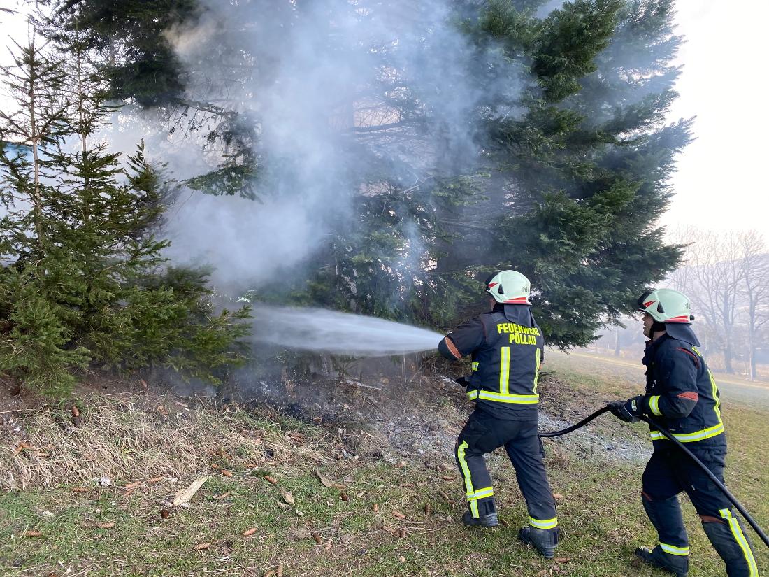 Böschungsbrand in Prätis