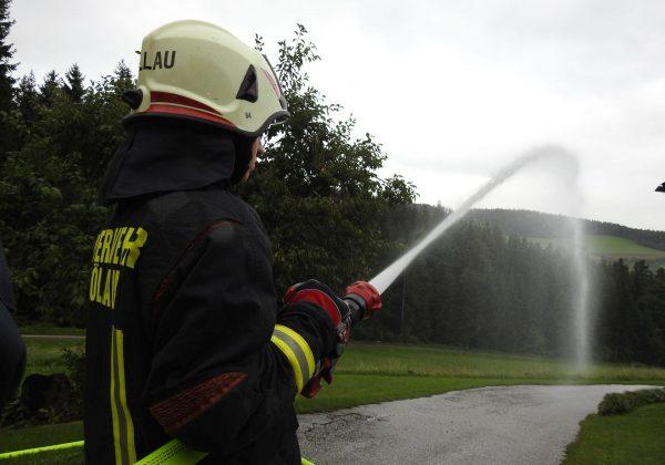 Übung: Wald- und Wirtschaftsgebäudebrand mit vermissten Personen