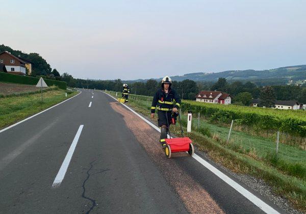Dieselspur bis nach Gleisdorf